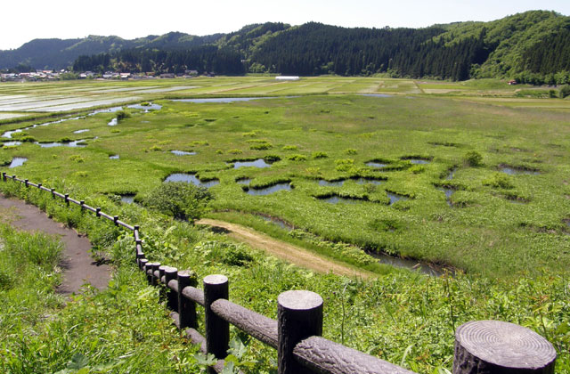 加田喜沼湿原