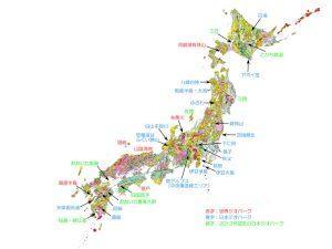 column-nakahara