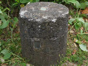 column-kishimoto4